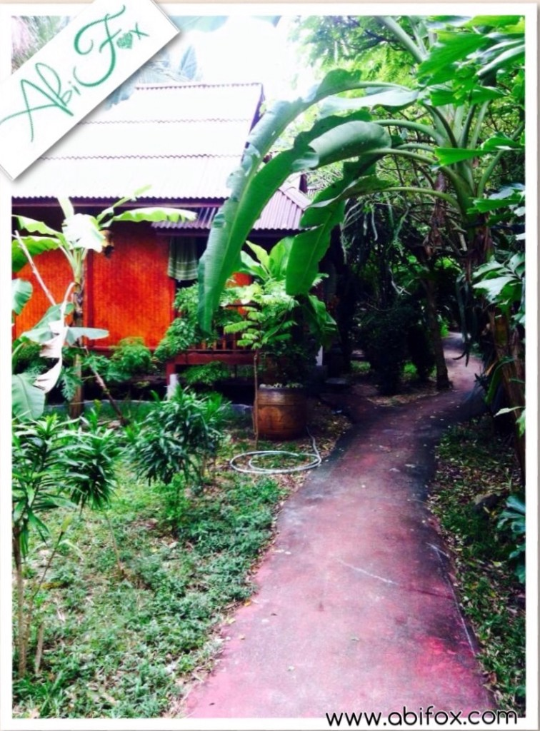 Dolphin bungalows, Koh Phangan, Ban Thing Pan Noi, places to stay, nature, quiet, relax,